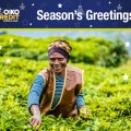 Oikocredit Seasons Greetings 2019 Final1.jpg