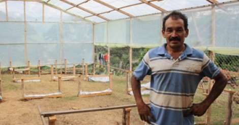 COCAFCAL member Don Isidro in his greenhouse.